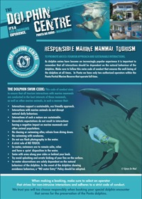 swim-code_code-conduct-responsible-practice-the-dolphin-centre-swim-with-wild-dolphins