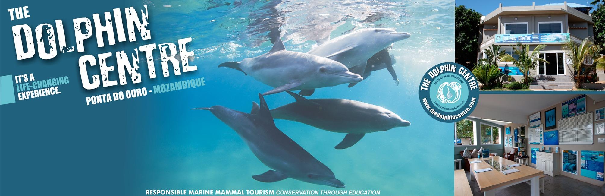 Dolphin Centre at Ponta Do Oura Mozambique